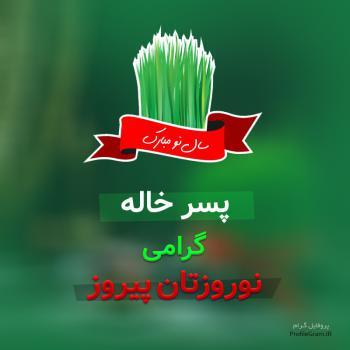 عکس پروفایل پسر خاله گرامی نوروزتان پیروز