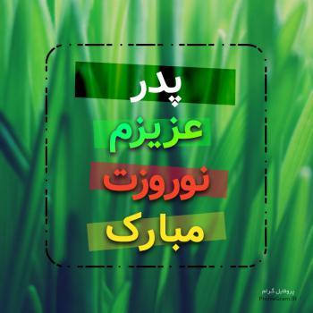 عکس پروفایل پدر عزیزم نوروزت مبارک