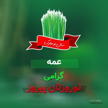 عکس پروفایل عمه گرامی نوروزتان پیروز