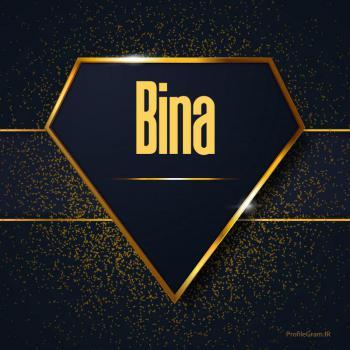 عکس پروفایل اسم انگلیسی بینا طلایی Bina