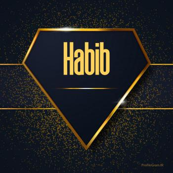 عکس پروفایل اسم انگلیسی حبیب طلایی Habib
