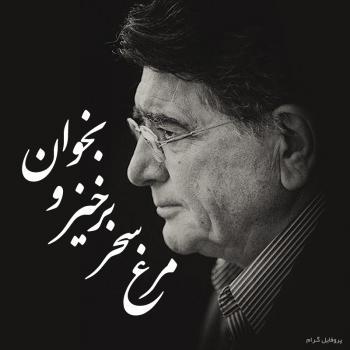 عکس پروفایل محمدرضا شجریان مرغ سحر برخیز و بخوان