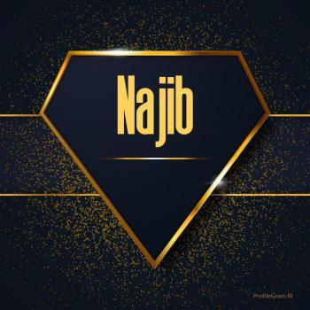 عکس پروفایل اسم انگلیسی نجیب طلایی Najib