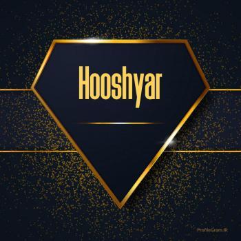 عکس پروفایل اسم انگلیسی هوشیار طلایی Hooshyar