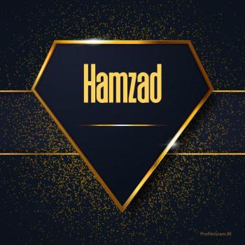 عکس پروفایل اسم انگلیسی همراز طلایی Hamzad