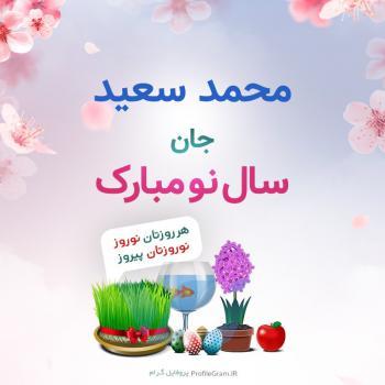 عکس پروفایل محمد سعید جان سال نو مبارک