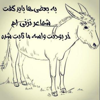 عکس پروفایل تیکه دار خر بودنت واسه ما ثابت شده