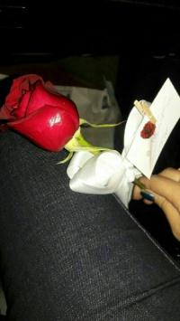 عکس استوری گل جذاب اینستا 20128