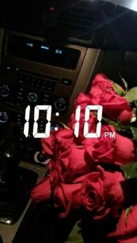 استوری استوری گل خوشگل برای اینستاگرام 20646