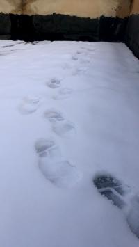عکس استوری ردپای برف برای اینستاگرام 20913
