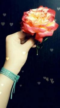 استوری استوری گل جذاب اینستا 21282