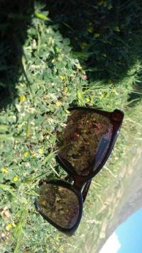 عکس استوری عینک قشنگ اینستا 21537