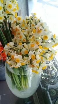 استوری استوری گل زیبا اینستاگرام 20771