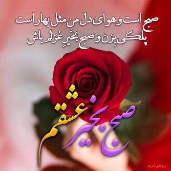 عکس پروفایل صبح بخیر عشقم با شعر عاشقانه و گل