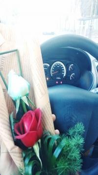 عکس استوری گل جذاب برای اینستا 21591