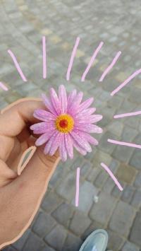 عکس استوری گل دخترونه story باحال برای اینستا 20926