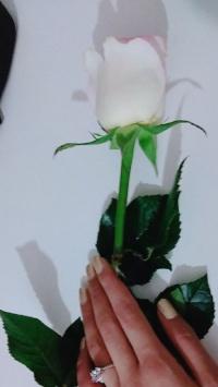 عکس استوری گل دخترونه خوشگل برای اینستاگرام 20352