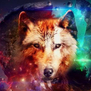 عکس پروفایل گرگ خفن جذاب رنگی