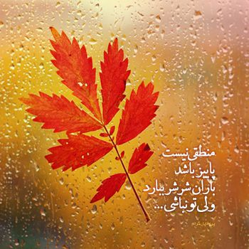 عکس پروفایل بارون پاییزی عاشقانه و دلتنگی