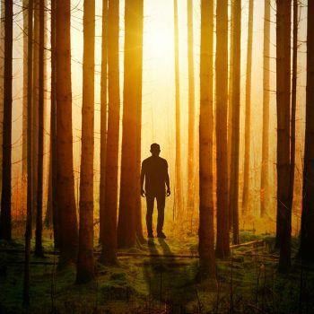 عکس پروفایل سایه پسر در جنگل نورانی