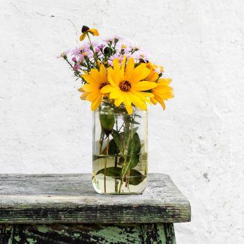 عکس پروفایل دسته گل زرد و صورتی با گلدون