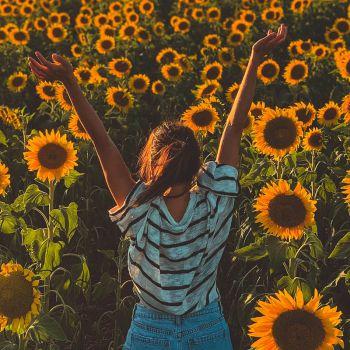 عکس پروفایل دختر شاد در باغ آفتابگردان