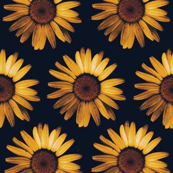 عکس پروفایل گل های زرد زیبا از نمای بالا
