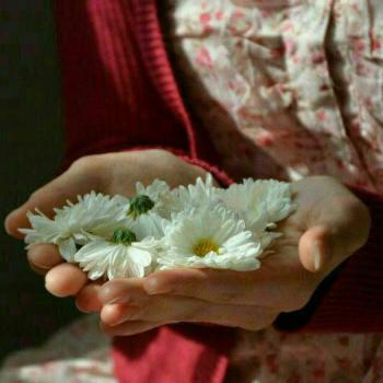 عکس پروفایل دخترونه با گل های سفید در دست