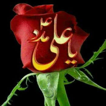 عکس پروفایل یا علی مدد با گل رز قرمز