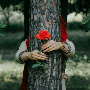 عکس پروفایل دختر ناشناس گل به دست