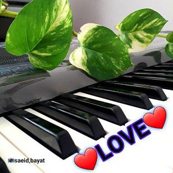 عکس پروفایل پیانو عاشقانه با گل و نوشته Love