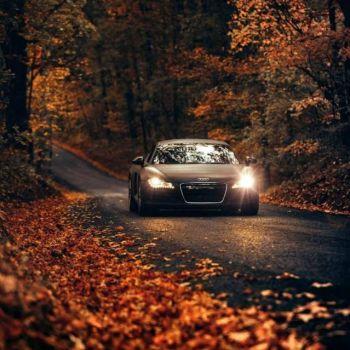 عکس پروفایل ماشین آئودی در جاده پاییزی زیبا