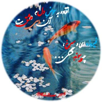 عکس پروفایل افتاده به حوض دلم آن ماهی عشقت