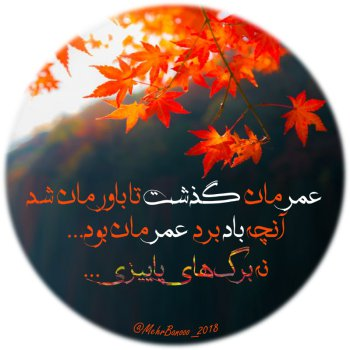 عکس پروفایل آنچه باد برد عمرمان بود نه برگ های پاییزی