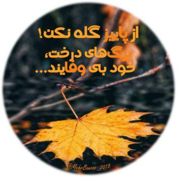 عکس پروفایل از پاییز گله نکن برگ های درخت خود بی وفایند