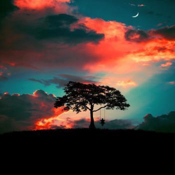 عکس پروفایل تاب سواری در طبیعت رویایی بدون متن