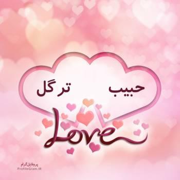 عکس پروفایل اسم دونفره حبیب و ترگل طرح قلب