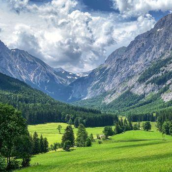 عکس پروفایل طبیعت زیبا سبز بهاری و کوه